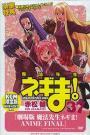 Negima! Magister Negi Magi: Anime Final (2011)