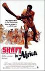 Shaft-in-Africa