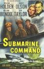 Submarine Command (1951)