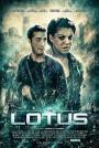 The-Lotus