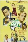 The Spy in the Green Hat (1967)