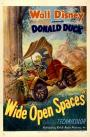 Wide Open Spaces (1947)