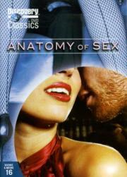 Анатомия секса кино